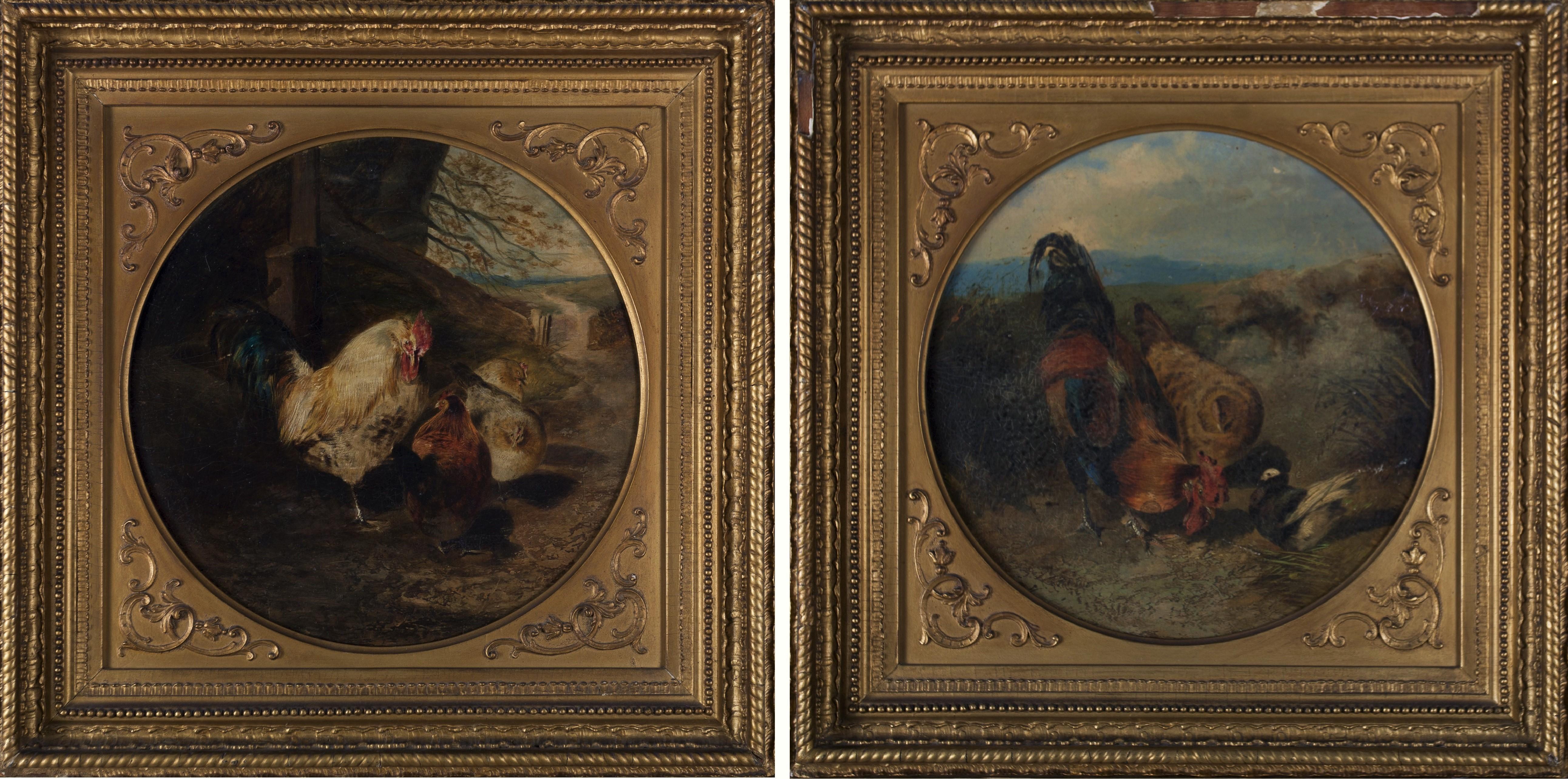 Malarstwo XIX w, z kręgu Williama Hugginsa (1820-1884), Ptactwo domowe