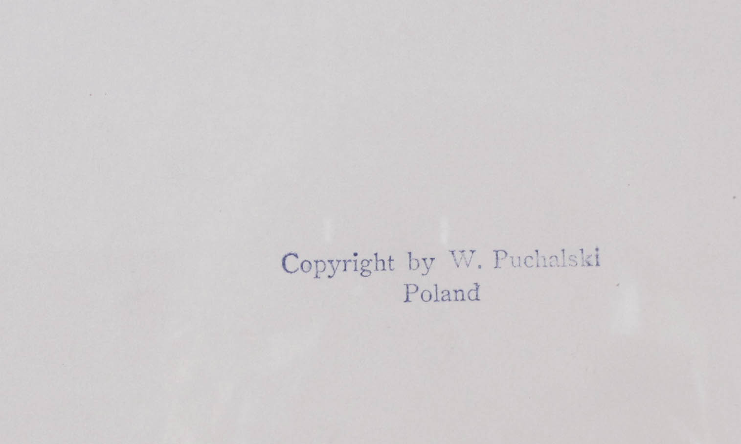 PUCHALSKI Włodzimierz (1909 Most Wielkie k. Lwowa - 1979 Wyspa Króla Jerzego) MŁODE CZAPLE W GNIEŹDZIE